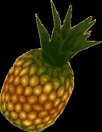 Fruit Ninja cheat code