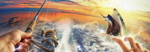 Fishing Strike astuce triche gemmes