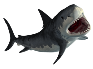 Hungry Shark World code triche